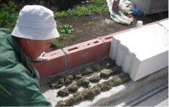 Кладка газобетонных блоков на раствор цементный силикатные бетоны виды